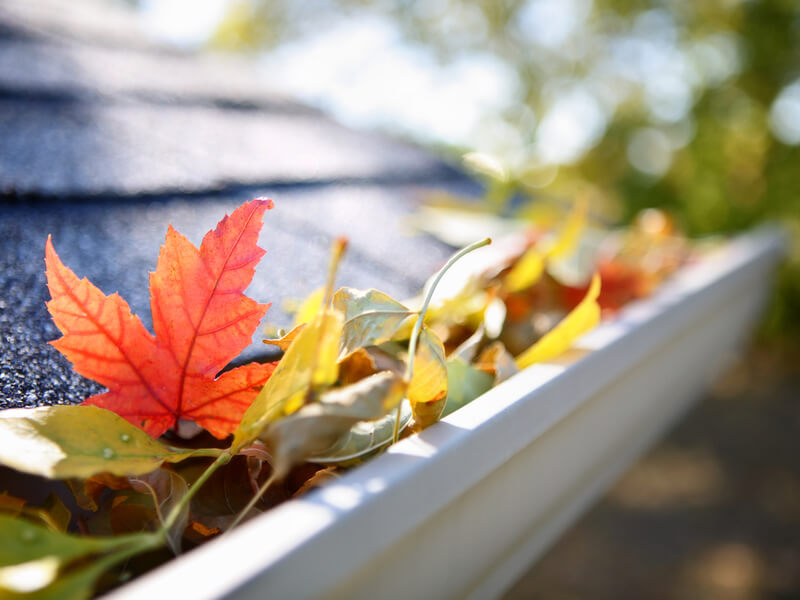 Gutter Cleaning in Huntersville NC
