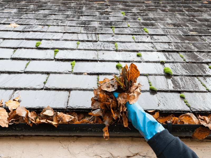 APS-Gutter-Cleaning-in-Indian-Land-SC